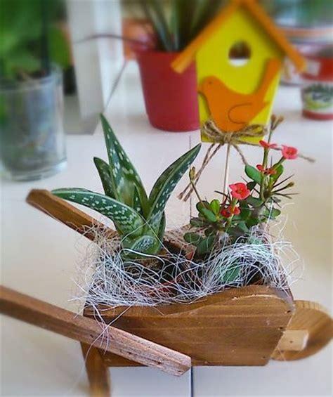 plantas y ramos de flores para regalar a hombres | La ...