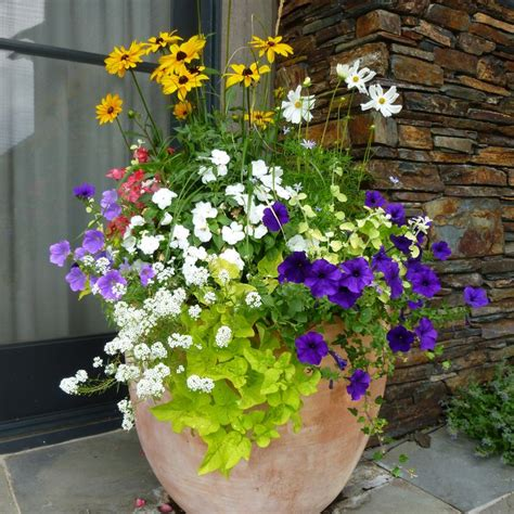 Planters Jackson Hole | Outdoor flowers, Garden services ...