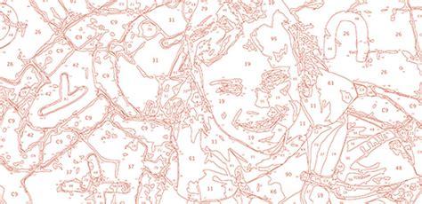 Plantilla de color generada   Pintar por números