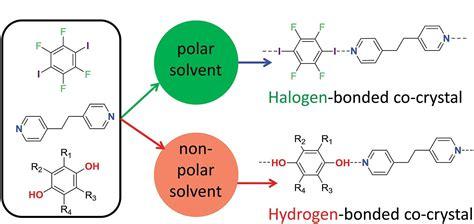 Polar solvents promote halogen bonds over hydrogen ones ...