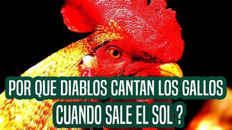 POR QUE DIABLOS CANTAN LOS GALLOS CUANDO SALE EL SOL ...