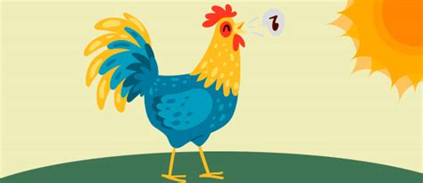 ¿Por qué los gallos cantan de día?   Mundo Primaria