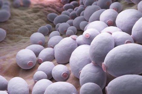 Por qué pica el ano: las principales causas del picor anal
