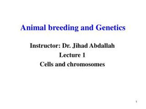 PPT   Animal Breeding and Genetics PowerPoint Presentation ...
