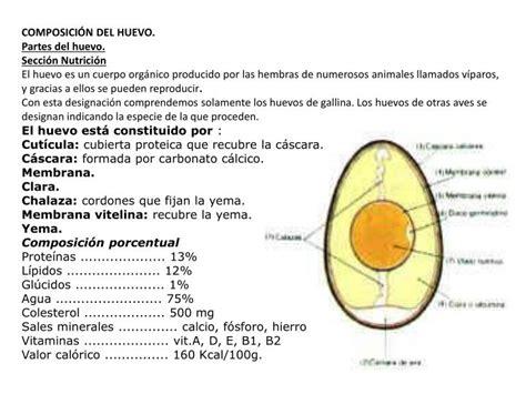 PPT   BIOQUIMICA DE LOS HUEVOS PowerPoint Presentation ...