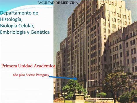 PPT   Departamento de Histología, Biología Celular ...