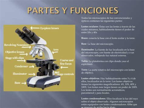 PPT   EL MICROSCOPIO PowerPoint Presentation, free ...