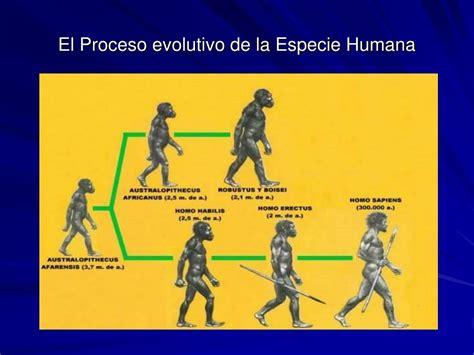 PPT   LA EVOLUCIÓN DEL SER HUMANO PowerPoint Presentation ...