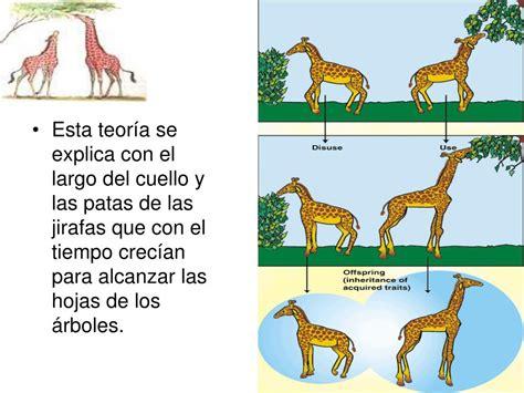 PPT   Teorías de la Evolución de los seres Vivos ...