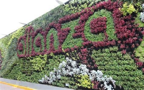 Precio de un Muro Verde natural   Generación Verde