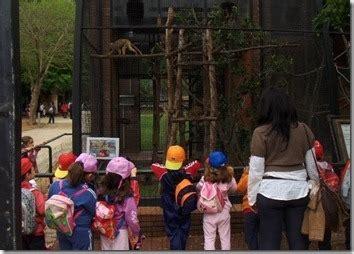 Precios del Zoo   DeFinanzas.com