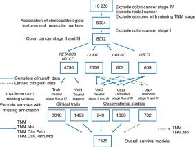 Prediction of overall survival in stage II and III colon ...