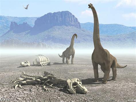 Preistoria : il difficile cammino dei dinosauri | Immagini ...