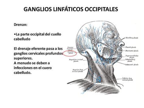 Presentación de ganglios linfáticos