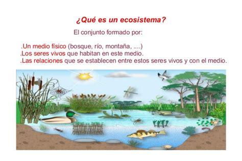 Presentacion T4 Ecosistema