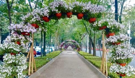 Primer Festival de Flores y Jardines llega a Reforma ...