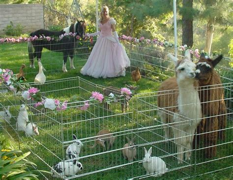 princess petting zoo party | Ponies/Petting Zoo/Carriage ...