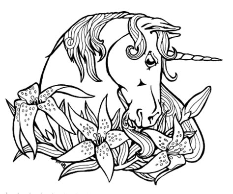 Print & Download   Unicorn Coloring Pages for Children