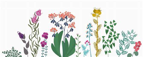 Printable : illustrations florales à imprimer sur ma ...