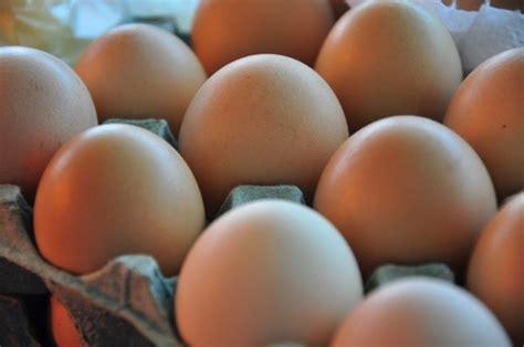 Productores de huevo contra aumentos de precios | Supercampo
