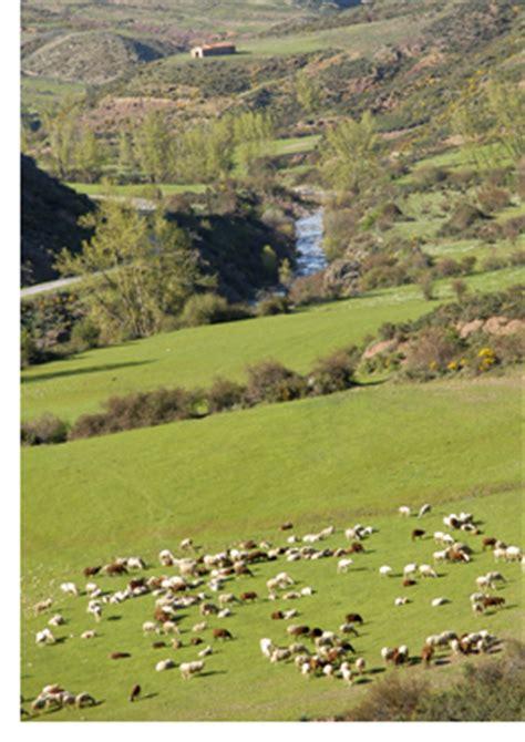 Programa de Desarrollo Rural de La Rioja 2014 2020 ...