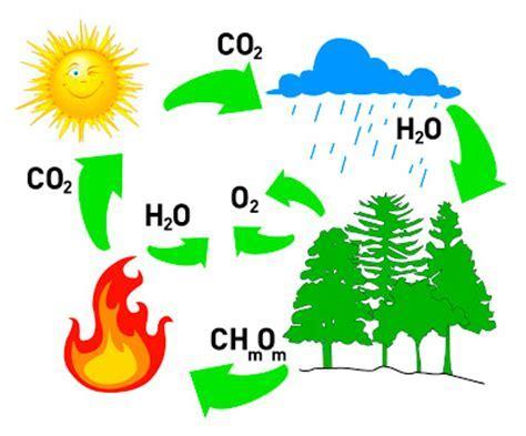 Propiedades Caracteristicas Del Dioxido De Carbono ...