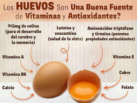 Propiedades de los huevos. | Planes de alimentación ...