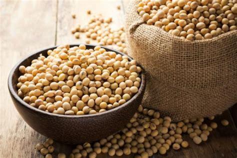 Propiedades lecitina de soja para la piel   5 pasos