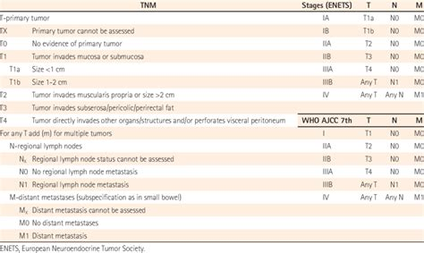Proposal for TNM Classification, and Stages for Endocrine ...