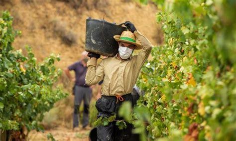 Prórroga de permisos para jóvenes inmigrantes que trabajen ...