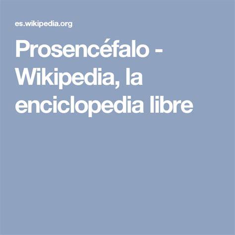 Prosencéfalo   Wikipedia, la enciclopedia libre   La ...