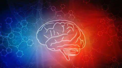 Prueba de inteligencia: un test online de 33 preguntas ...
