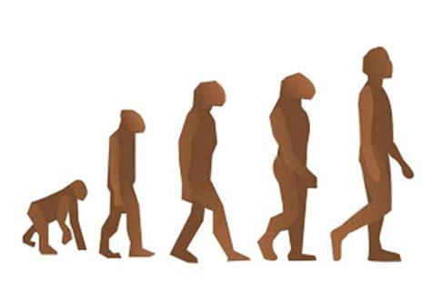 pruebas biológicas de la evolución  ciencia del mundo ...
