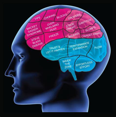 Psicología de Mónica: TEMA 1: LA PSICOLOGÍA COMO CIENCIA