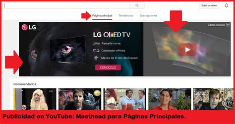 Publicidad en YouTube: tipos de anuncios, tips y consejos