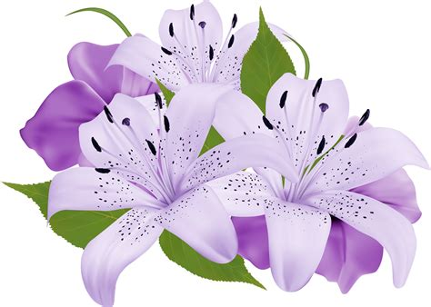 Purple lily clipart 20 free Cliparts   Download images on ...