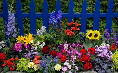 Qoltuq Yaramaz: Cerca con Coloridas Flores   Imagen de ...