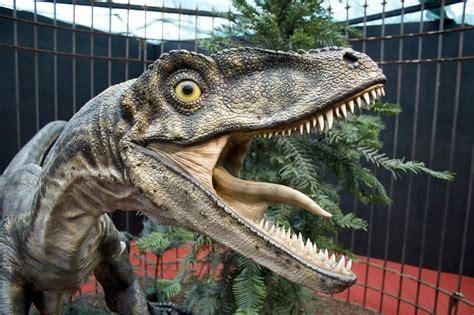 Qué Busca: El velociraptor: Datos curiosos sobre el ...