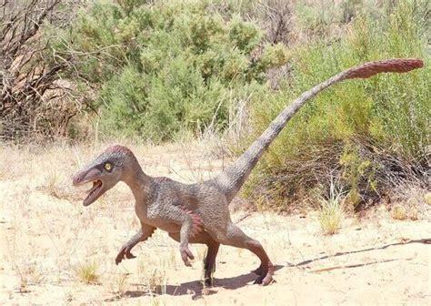 Que Come el Velociraptor? 2020   Donde Vive, Como Nace ...