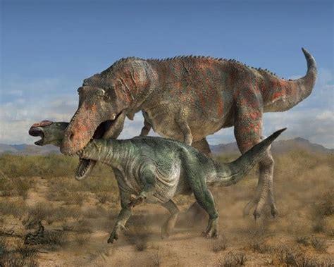 ¿Qué comían los dinosaurios? – Dinosaurios