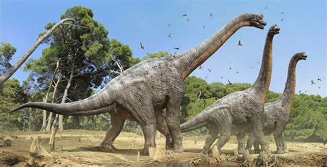 ¿Qué dinosaurio es conocido como el rey del Cretácico ...