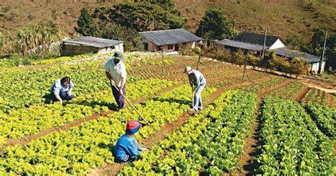 ¿Qué es Agricultura? » Su Definición y Significado [2020]