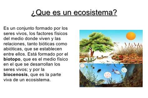 Que es el ecosistema   Imagui