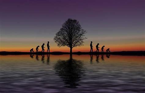 ¿Qué es Evolución? » Su Definición y Significado [2020]