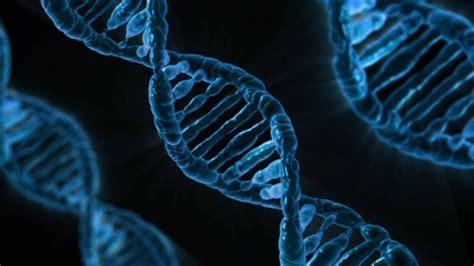 ¿Qué es la biología? | cienciaybiologia.com