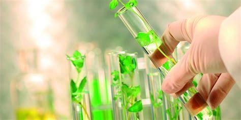¿Que es la biotecnologia? ️ » Respuestas.tips