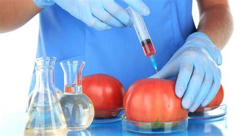 ¿Qué es la Biotecnología? | Una Introducción a la ...