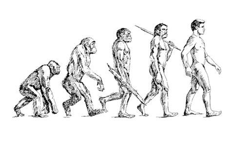 Qué es la evolución   Escuelapedia   Recursos ...