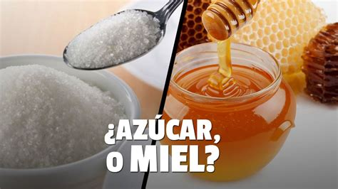 ¿Qué es mejor, la miel o el azúcar?   Apicola Costa Azahar