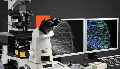 ¿Qué es Microscopia? » Su Definición y Significado [2019]